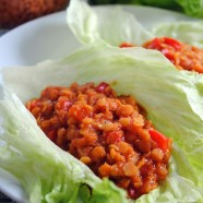 Vegetarian Lentil Sloppy Joe Lettuce wraps - simple, healthy, and delicious! | foxeslovelemons.com