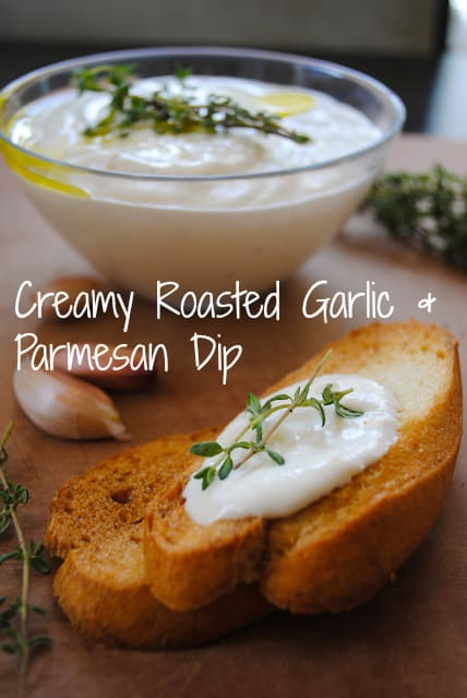 Creamy Roasted Garlic & Parmesan Dip - A delicious, versatile dip with simple ingredients. | foxeslovelemons.com
